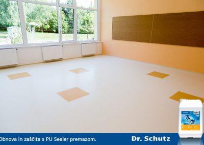 Dr. Schutz PU Sealer 2
